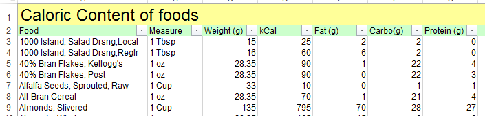 excel template food calorie and nutritional value of various foods