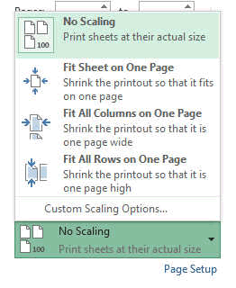 scale print setting excel