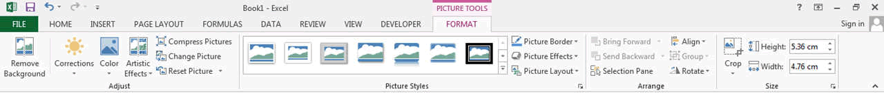 picture tool format